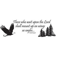 Those who wait upon the lord...